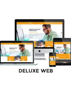 metrolocal media deluxe website design